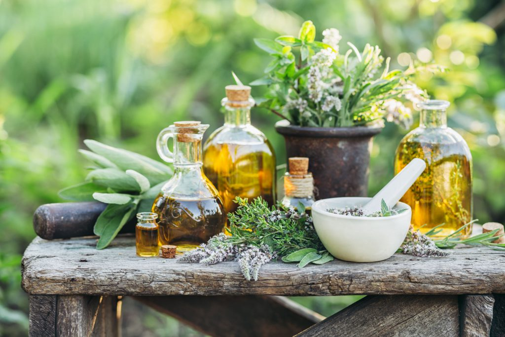 Fresh herbs from the garden and the different types of oils for massage and aromatherapy.